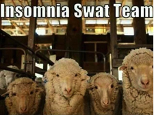 insomnia-swat-team